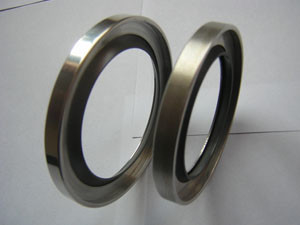 PTFE SS Oil Seal PTFE Packing PTFE SS Oil Seal for Air